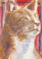 Art Card: Portrait of a Cat by Sketchee
