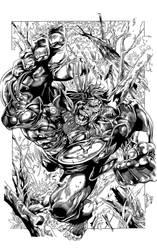 Wolverine vs Hulk by BrenGun