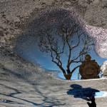 19.02.2009-3 by hkocak