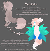 Merrimouse Concept by Storied