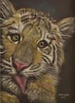 Licking Tiger cub by HendrikHermans