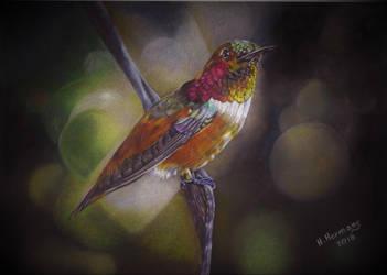 Humming bird 2 by HendrikHermans