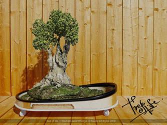 Tree of life V1 by Ravihara-Weerathunge