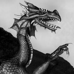 Dragon - close up by jekaa