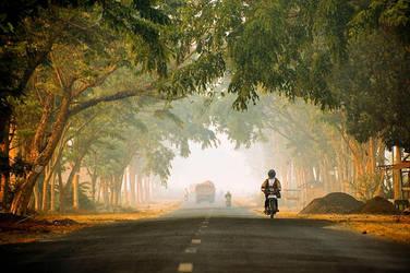 Pure Morning by pandepandu