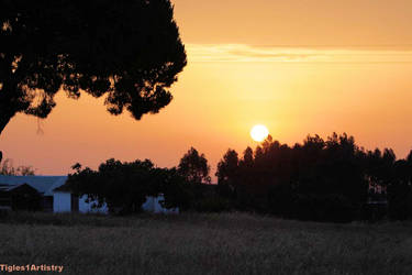 Rural Sunset... by Tigles1Artistry