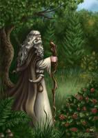 Magician by Araniart