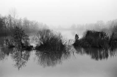 foggy lake by Sanjko0