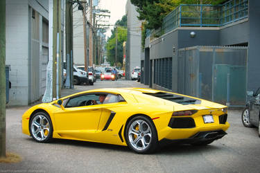 Yellow LP700 by SeanTheCarSpotter