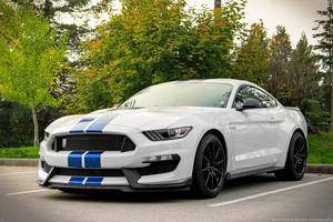 GT350 by SeanTheCarSpotter