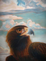 Eagle with clouds by NetRaptor