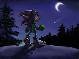 Shadow in the Snow - wallpaper by NetRaptor