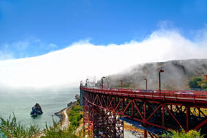 San Francisco by WhiteBook