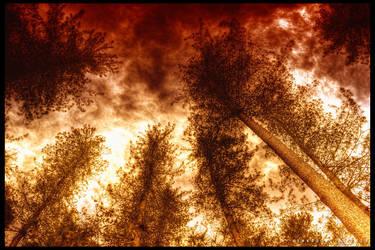 Under a Blood Red Sky by Swaroop