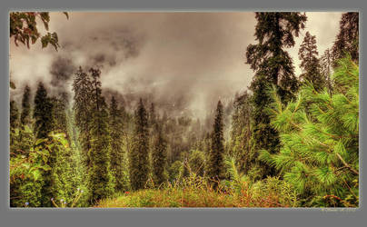 The sky and the earth by Swaroop