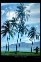 Tropical twilight by Swaroop
