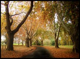 Autumn by jasmine17