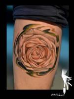 white rose by eminimal