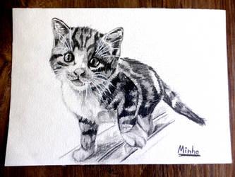 Minho by Steve-does-art