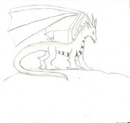 Dragon Sketch by VollyTyrannis