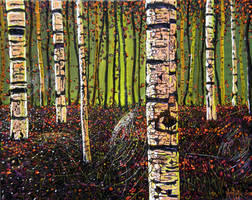 The Birches III by montiljo
