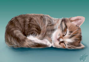 Sleepy Kitty by Nanaki-angel23