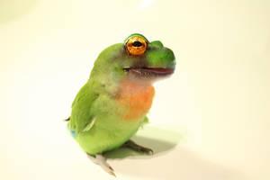 Love Froggie by EmeraldTokyo