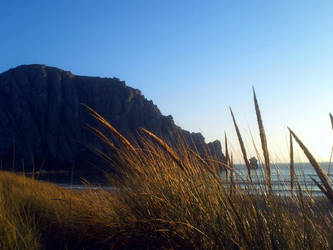 Morro Bay Dunes 7 by Nevuela