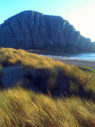 Morro Bay Dunes 9 by Nevuela
