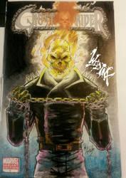 Ghost Rider  by Wild-Inx