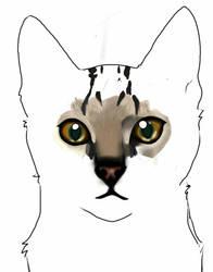WIP Cat by Faeben