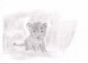 Cub by its-jst-me77
