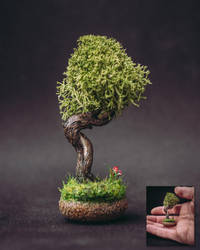 Sculpted bonsai tree (with a tiny flower) by eVolutionZ