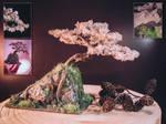 Sakura full blossom sculpted tree by eVolutionZ