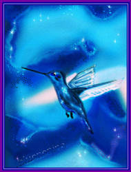 Blue Colibri by nenina