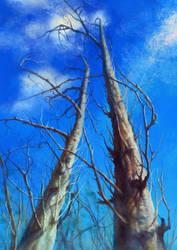 TREE by jianjiagu