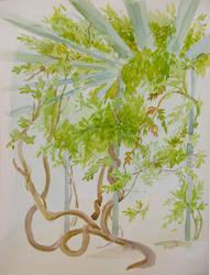 Gazebo with wisteria by yellika