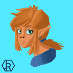 Link by JR-Jayquaza