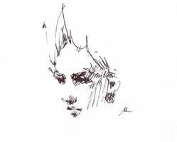 stroke in pen by alrasyid