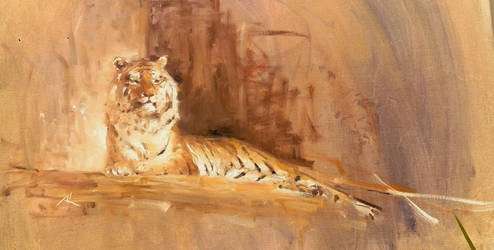remembering tiger by alrasyid