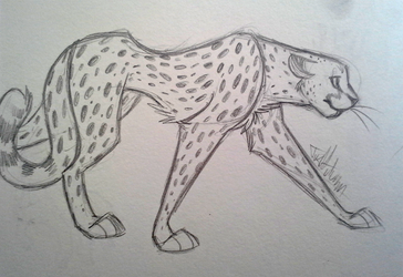Cheetah Cheetah by JustAutumn