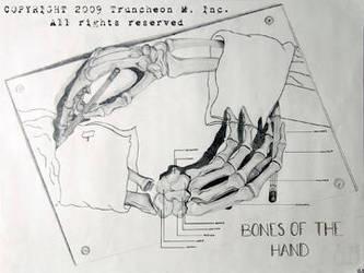 Escher's Hands by truncheonm