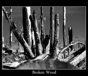 Broken Wood by valmist by ARIZONA-Art-History