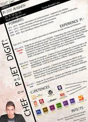 CV or resume Ticssou by ticssou