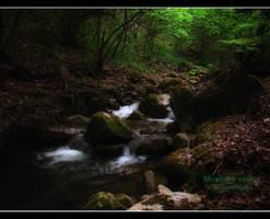 The river by AlexandruGatea