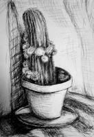 Cactus by Keltu