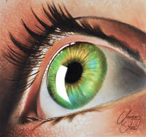 Eye -- Oil paint dry brush + Pencils. by f-a-d-i-l