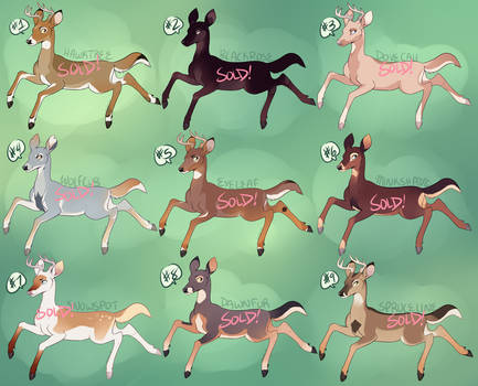 Deer Adopts 6 [USD/POINTS] [SOLD] by Machati