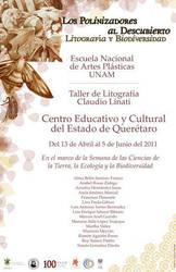 Expo Poster - Polinizadores by mieame