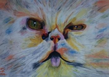 I'm a bad cat by safija36